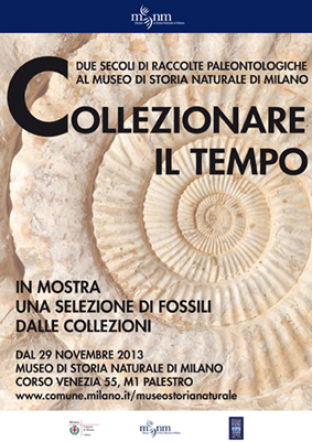 Fossili / Tempo