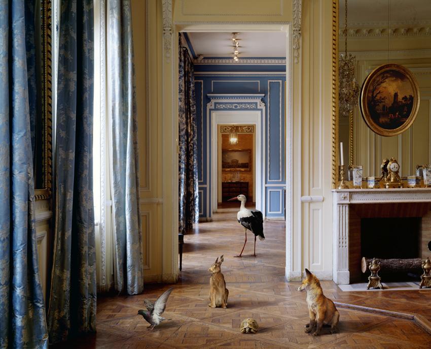 Karen-Knorr-dalla-serie-Fables-Musee-Carnavalet-2004